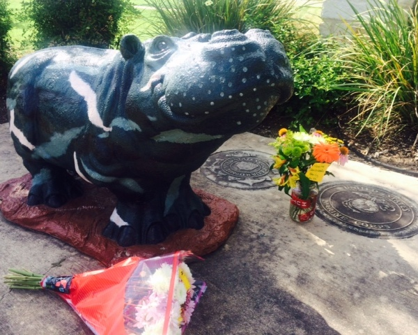 Flowers at Hutto Hippo for Sgt. Chris Kelley_145060