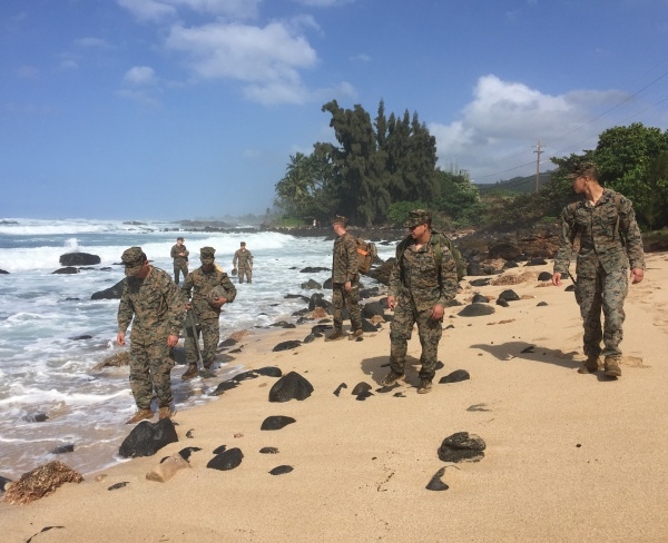 marine-search_231453