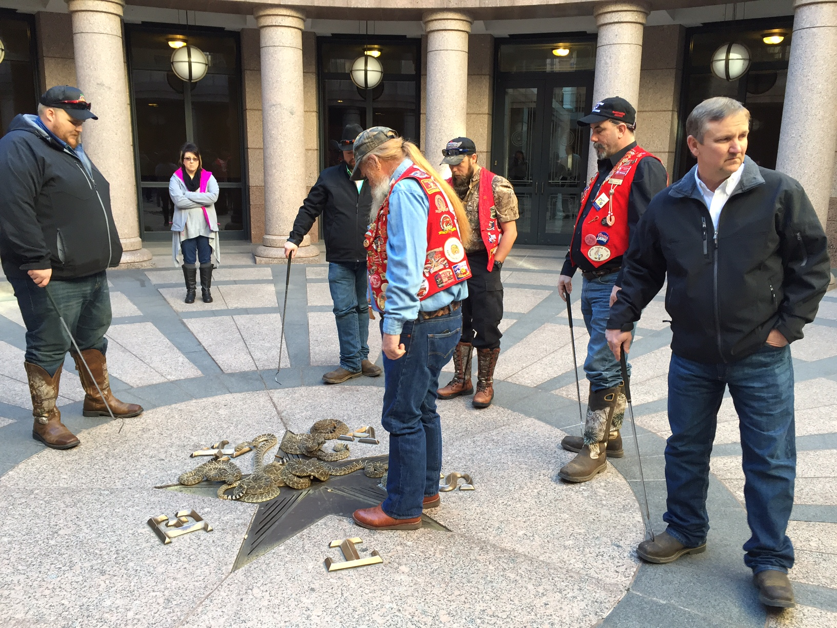 rattlesnakes at the capitol_241854