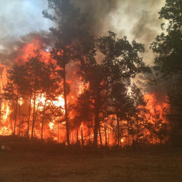 hidden pines fire bastrop_187917