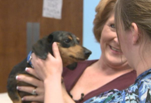 Tank reunited with its owner at Austin Humane Society_275000