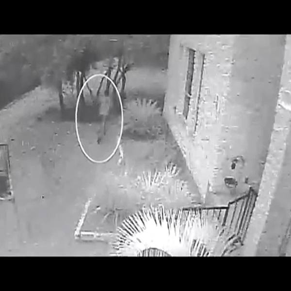 VIDEO: APD video of assault suspect on Spicebrush Drive, possible serial predator