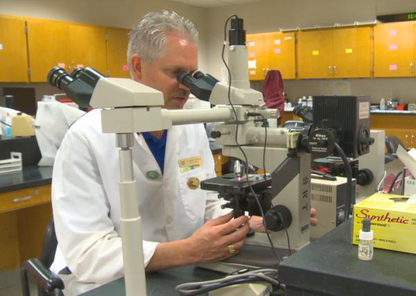 Texas State Professor puts the Zika virus into perspective_305487