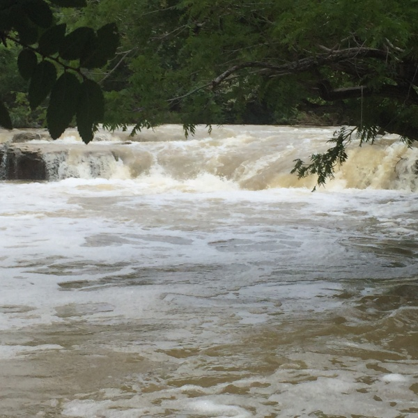 Twin Falls at Barton Creek Greenbelt_293195