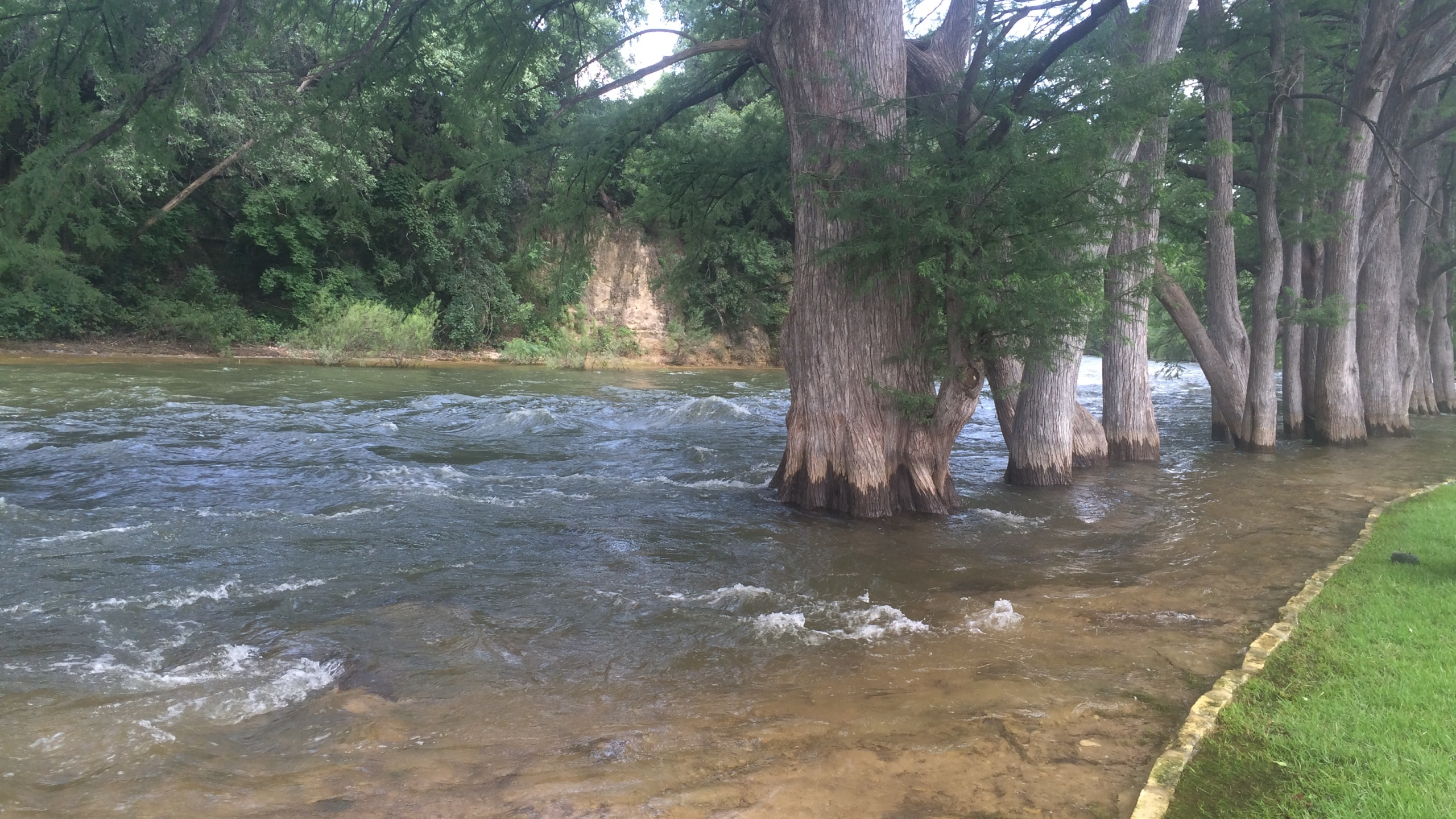 Guadalupe River_146838