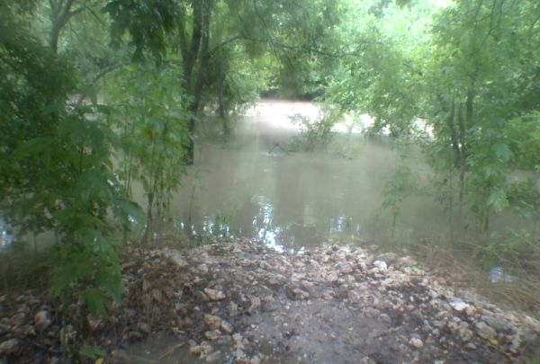 Barton Creek_334601