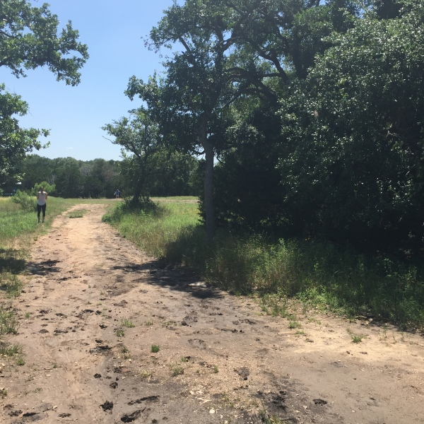 Circle C Ranch Metropolitan Park where a woman was grabbed and pushed to the ground by a man on Friday, May 20, 2016 (KXAN Photo_Amanda Brandei_288208