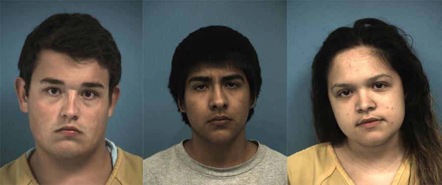 Cedar Park bb gun arrests_346892