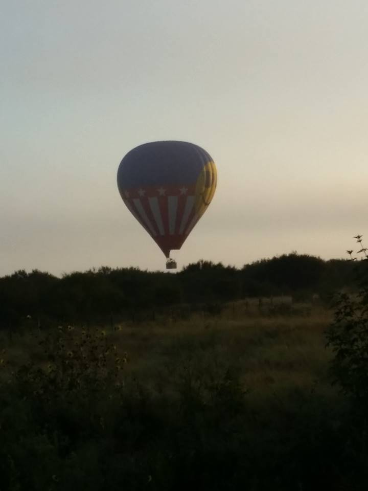 One of the last photos taken of the hot air balloon before it crashed in a field near Lockhart. July 30, 2016_319180