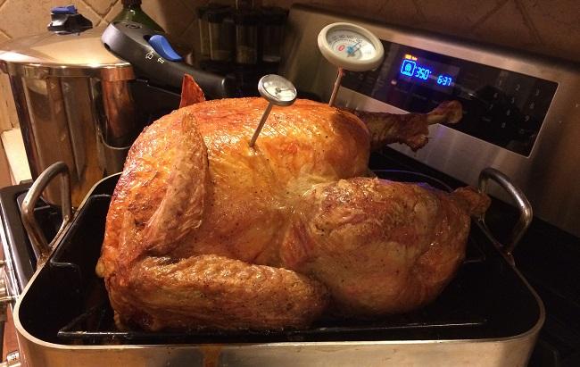 turkey_374230