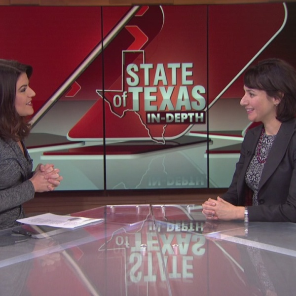 State of Texas: In-Depth - from school board to Texas house