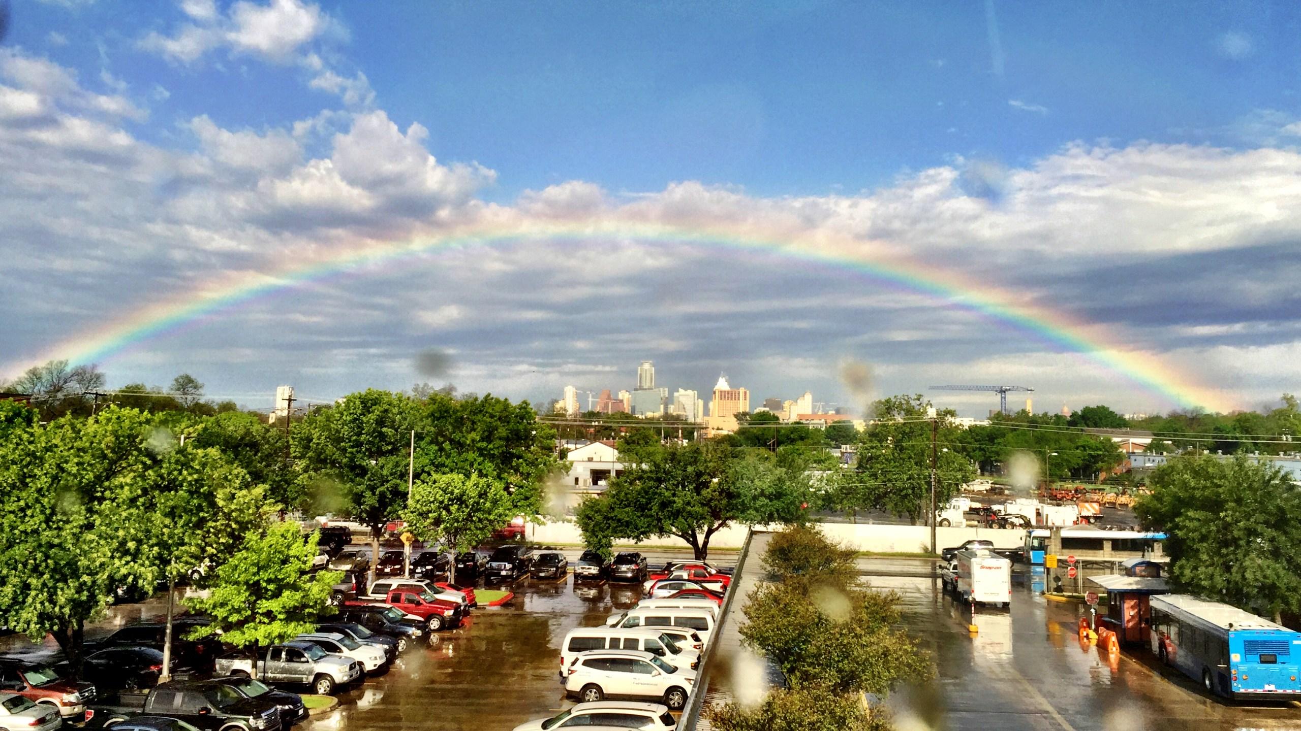 Rainbow_265718