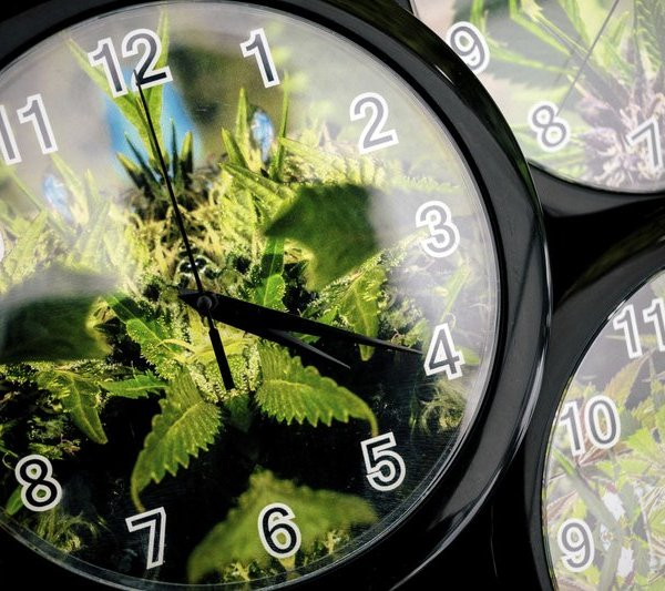 FILE - In this Aug. 15, 2014 file photo, set to the symbolic 4_20 time, weed patterns adorn clocks up for sale on the first of three days of He_457049