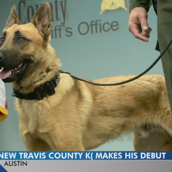 Travis County deputies introduce newest K9