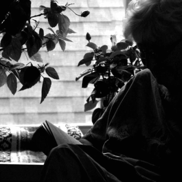 Silhouette of elderly woman_500328