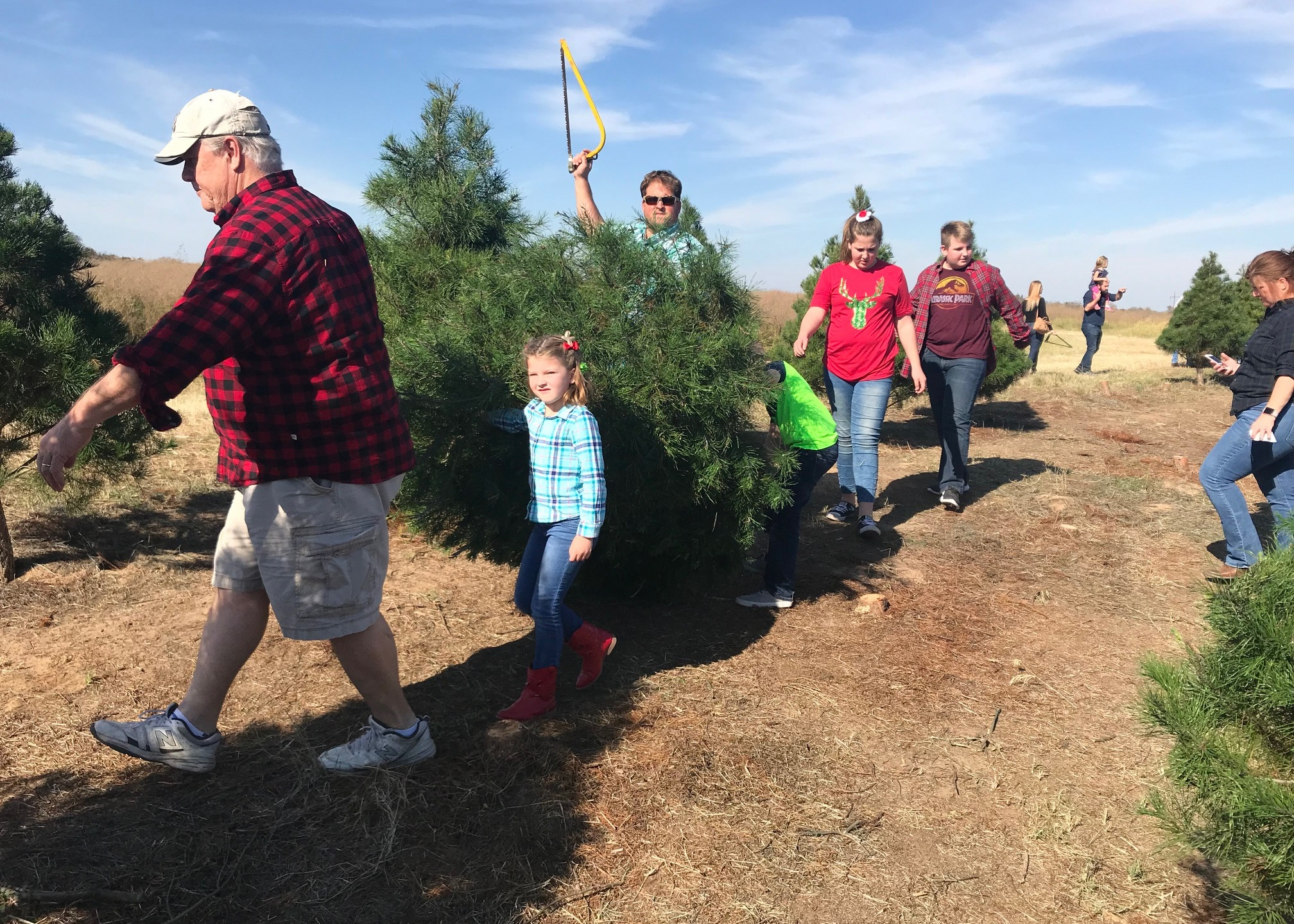 Elgin Christmas Tree Farm - 2017_587527