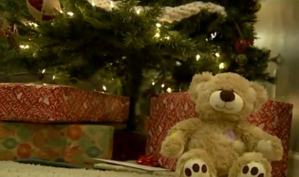 stolen teddy bear_602482