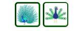 Peacock emoji (From Unicode)
