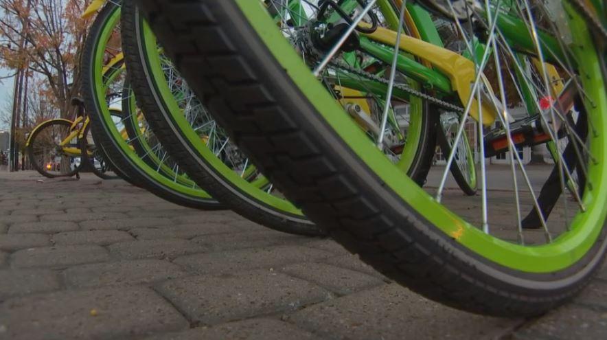 bike share_1522899709052.JPG.jpg