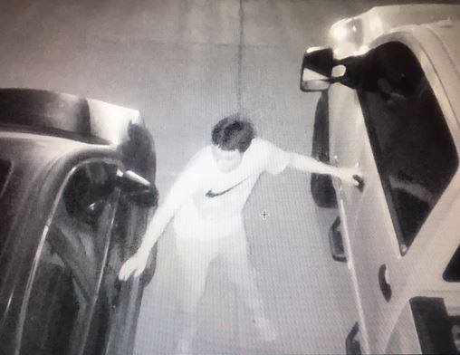 Manor police say this multitasking suspect was seen trying