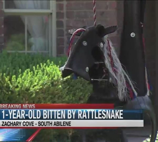 1_year_old_bitten_by_rattlesnake_hiding__0_20180626221614