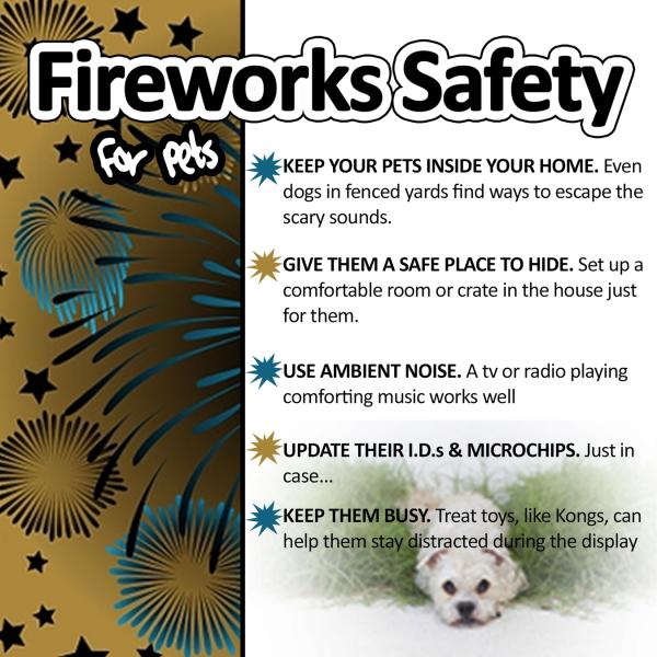 7-3 Fireworks safety kaxan_1530648206270.png.jpg