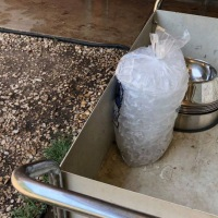 Austin Pets Alive! brings out ice to help its dogs as the city reaches record heat on July 23, 2018