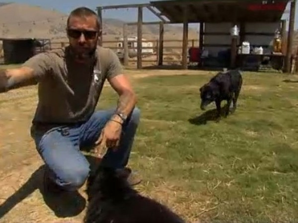 Zach Skow recovered with the help of rescue dogs