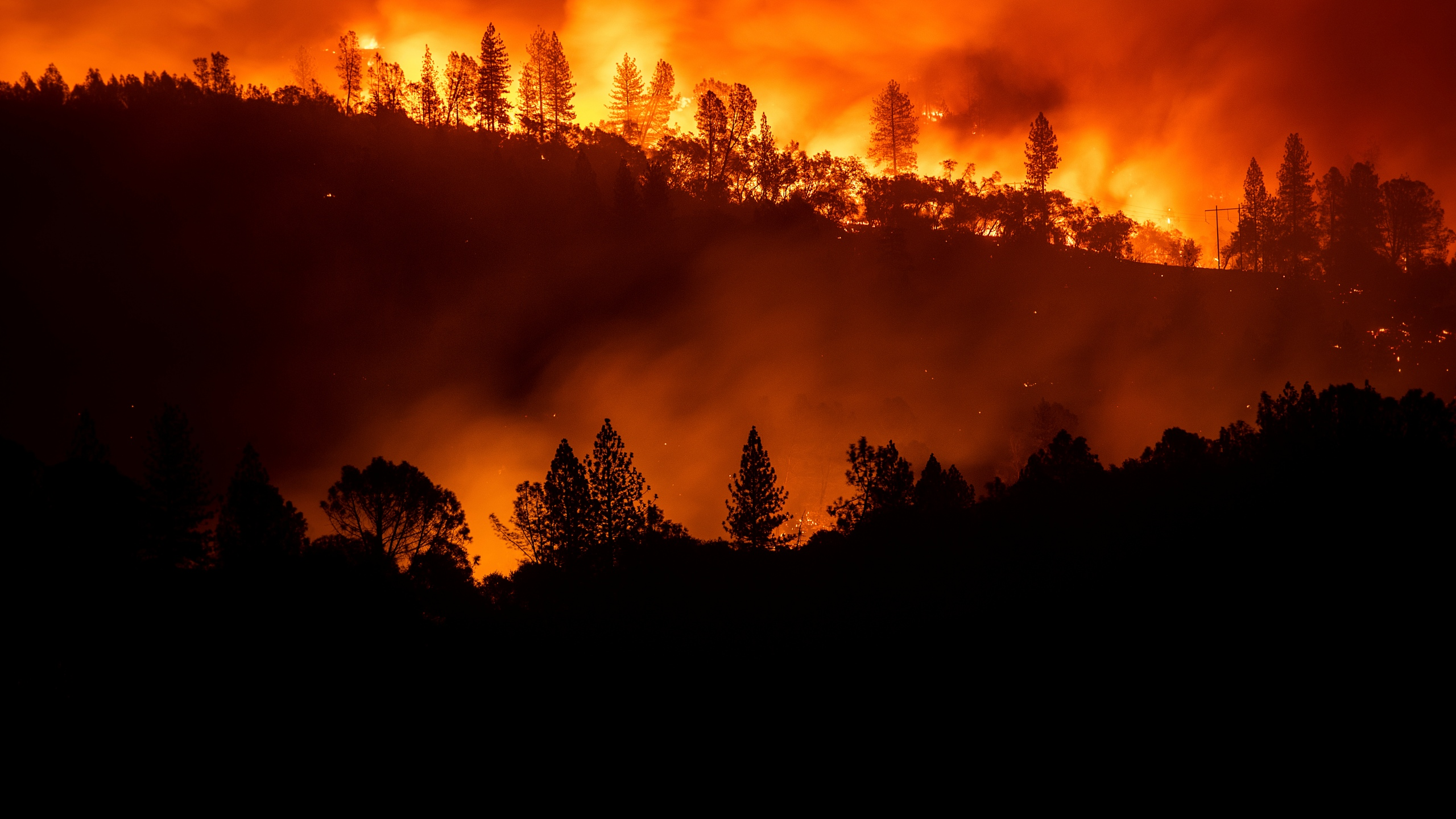 California_Wildfires_33886-159532.jpg41271910