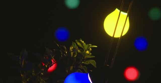 Holiday-Christmas-lights_149728