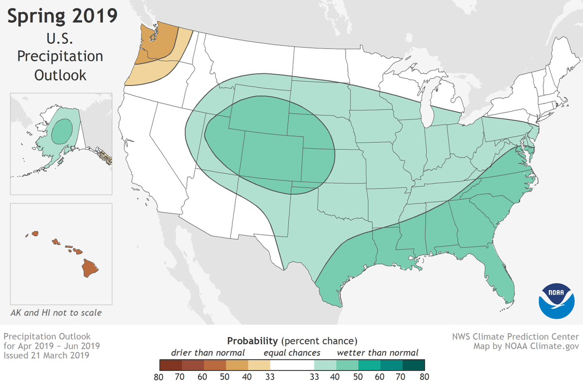 SPRING OUTLOOK_1553213386678.png.jpg