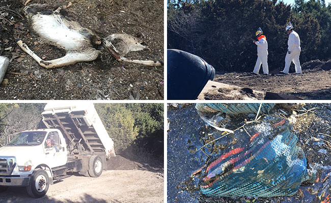 Various shots of the site where TxDOT crews were dumping various items. (KXAN Photo)