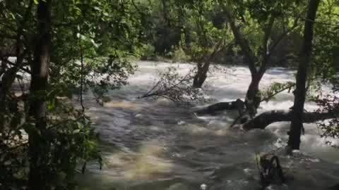 Barton_Creek_Greenbelt_on_May_12_5_20190512204541