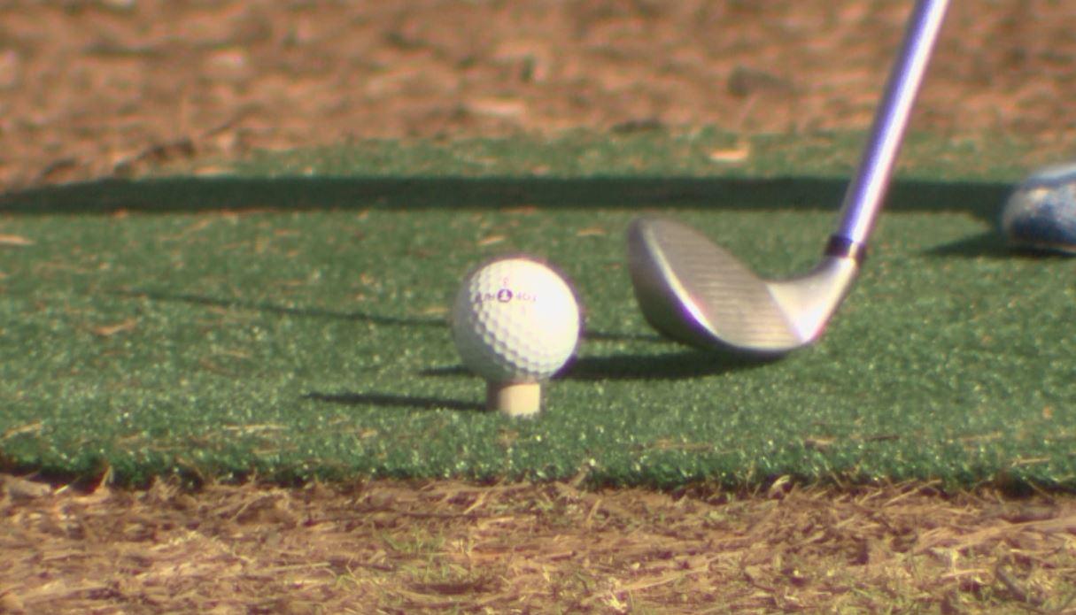 Butler Park Pitch & Putt golf_235999