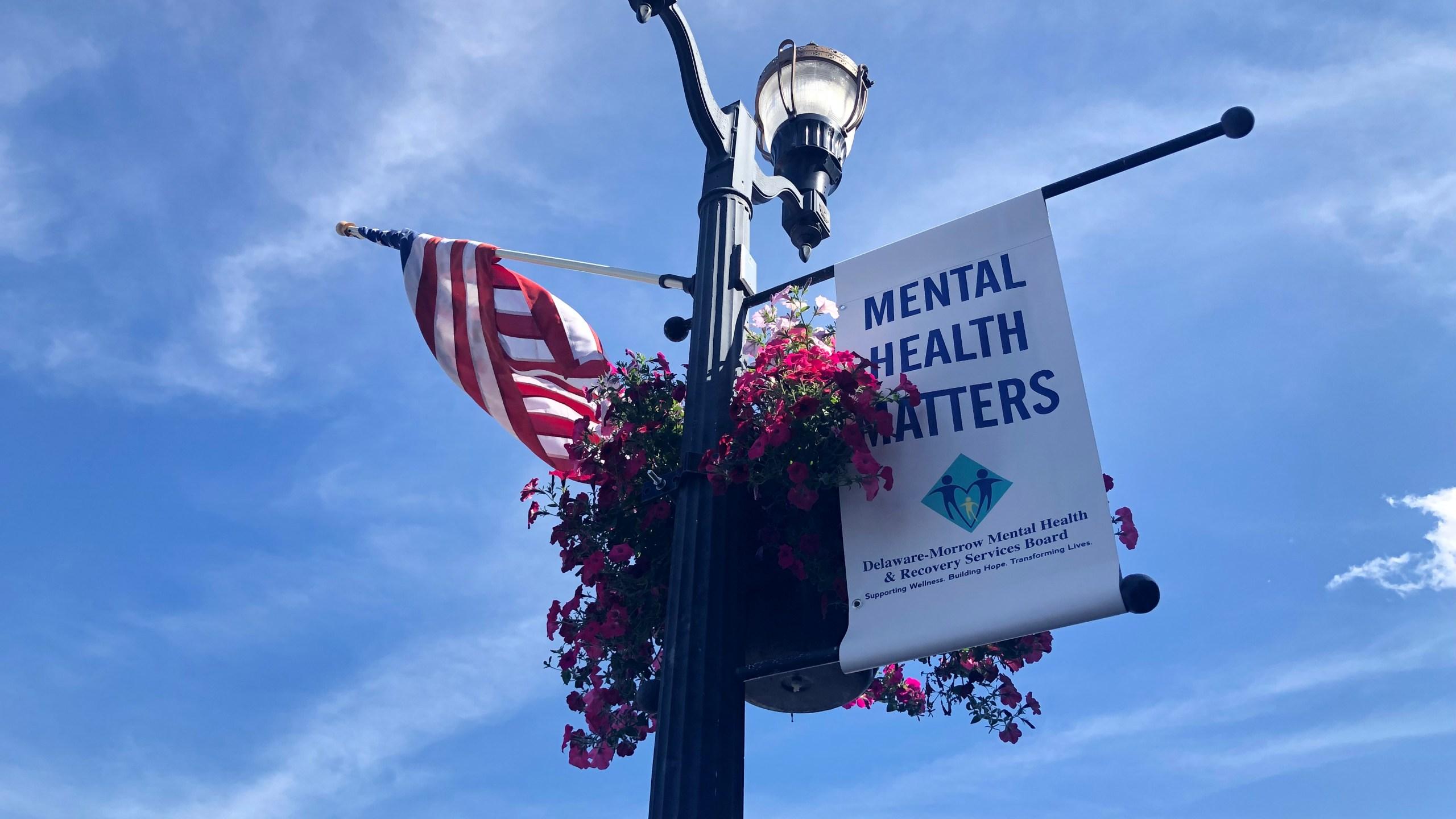 Delaware Ohio mental health matters