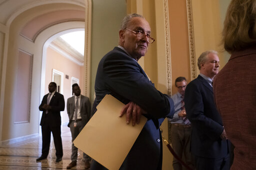 Chuck Schumer, Chris Van Hollen