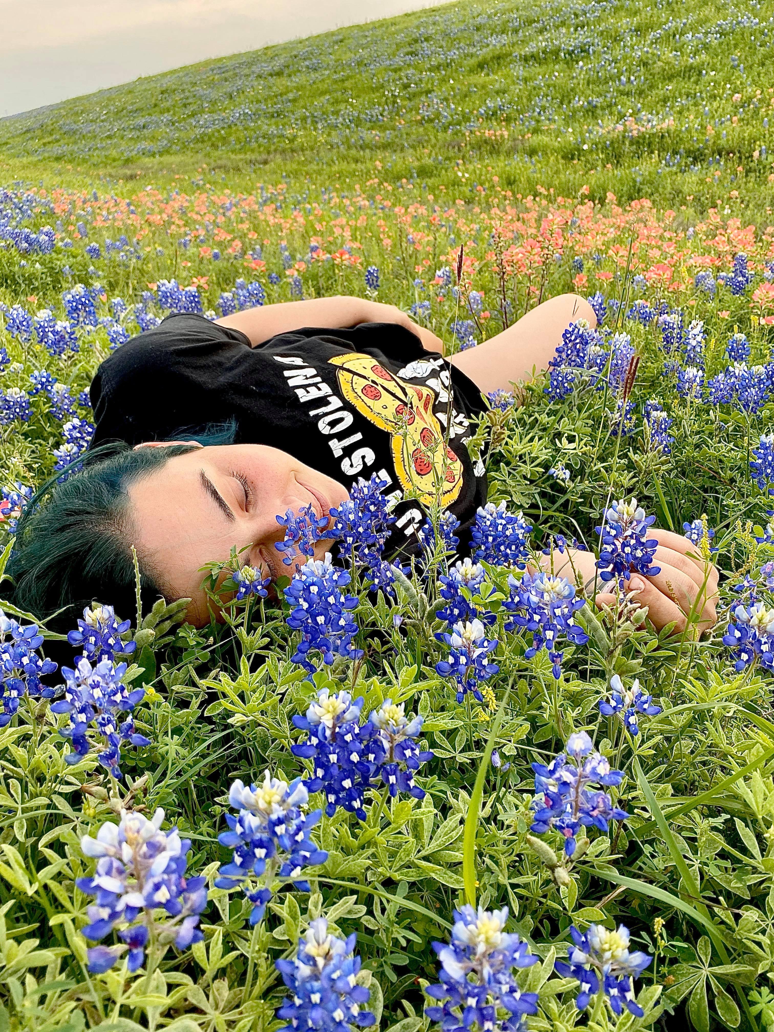 Bluebonnets (Courtesy Megan Knapp)