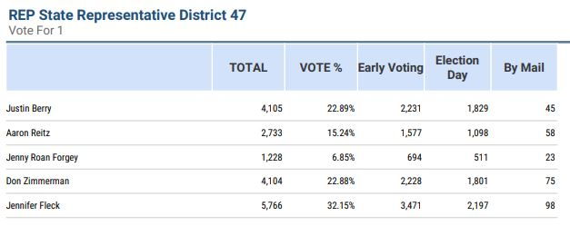 The official results of the HD 47 primary, per the Travis County Clerk's website.