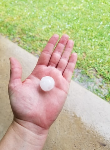 Marble size hail in south Austin 5-24-20