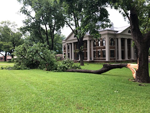 Storm damage in Mason County 5-27-20
