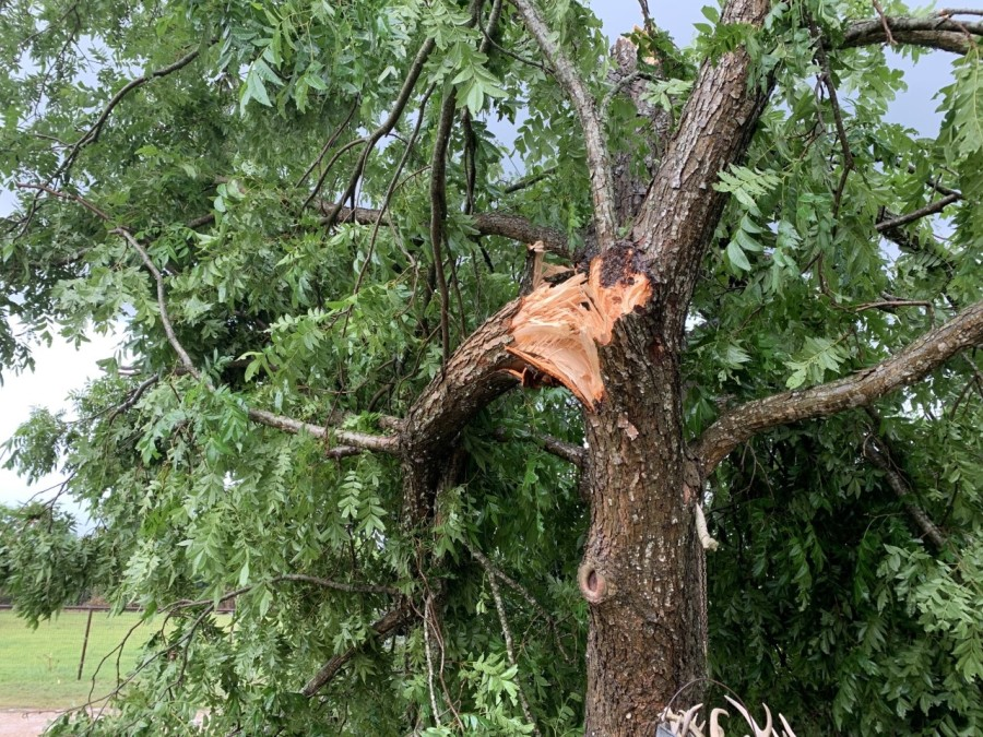 Storm damage in Smithville 2