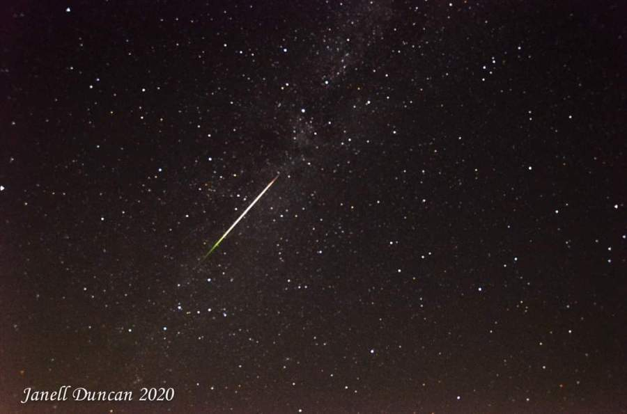 Perseid Meteor shower 2020 (Courtesy Janell Duncan)