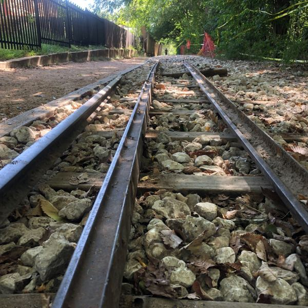 Zilker Zephyr train tracks were removed Aug. 13, 2020 (KXAN Photo/Frank Martinez)