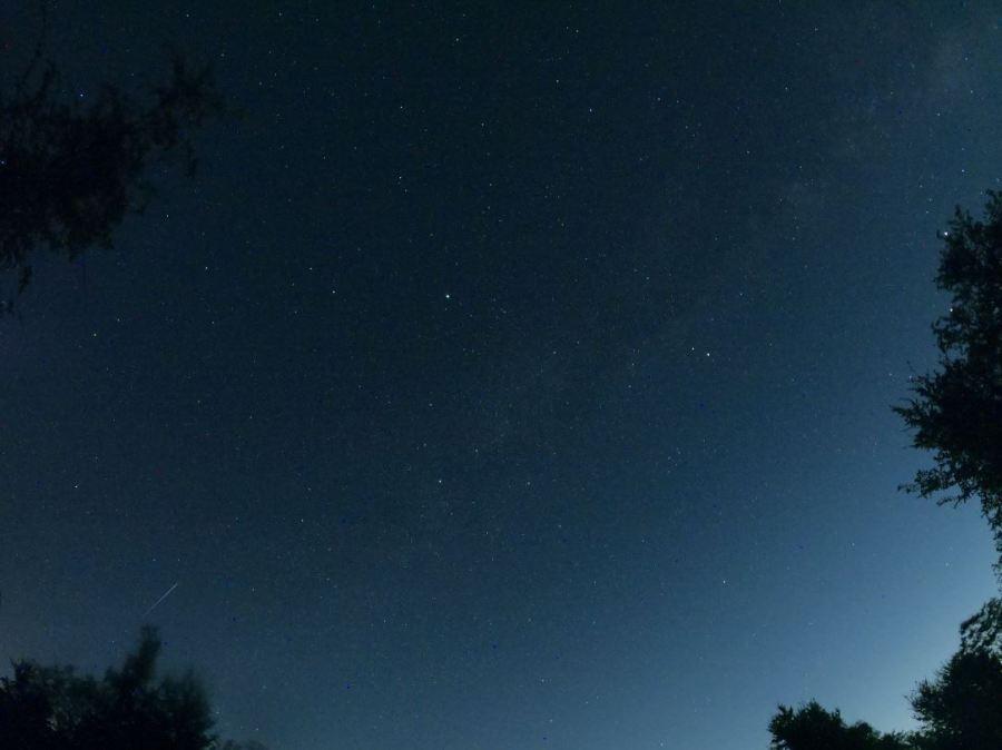 Perseid Meteor Shower 2020 (Courtesy Raymond Clark)