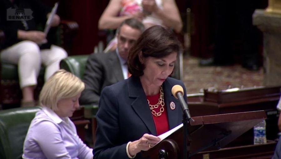 State Senator Kristin Phillips-Hill presents a solution to broadband access (WHTM Photo)