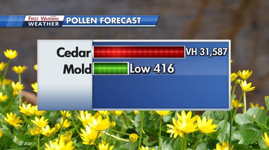Pollen 2021