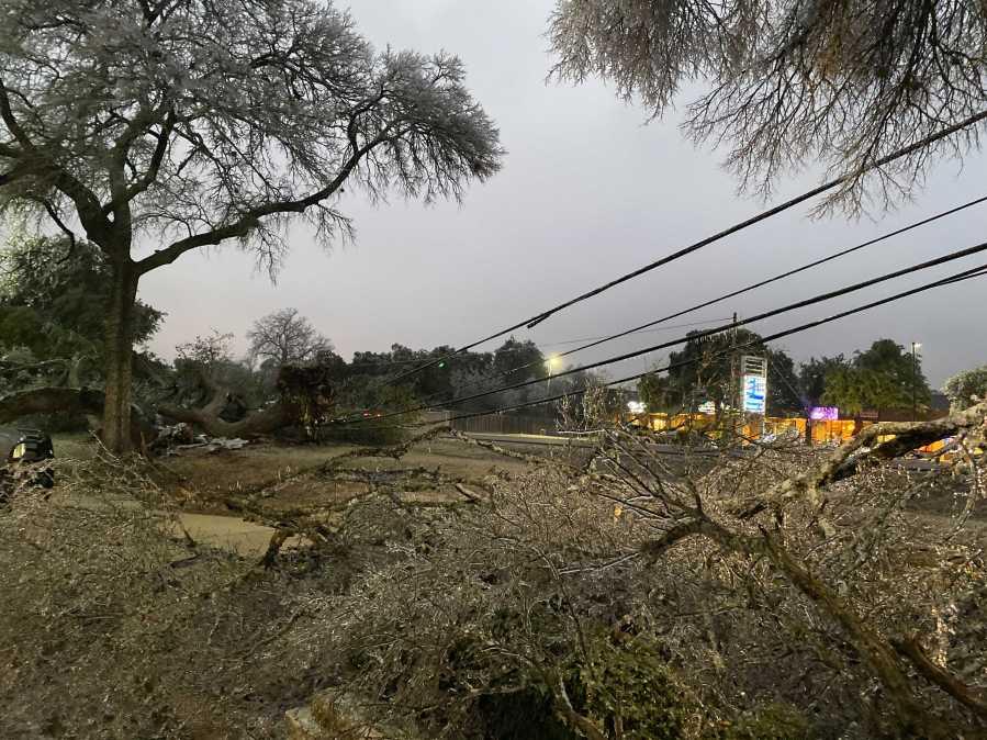 Massive tree takes down power line outside Walgreens on FM 620 Road in Austin (KXAN/Kaitlyn Karmout)