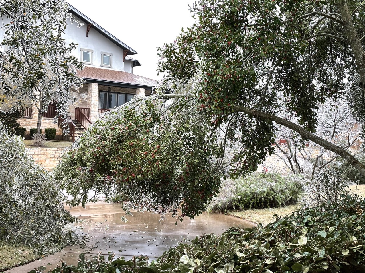 Branches breaking and leaning with the ice in Cedar Park Feb. 11, 2021 (Courtesy Cindy Merryman)