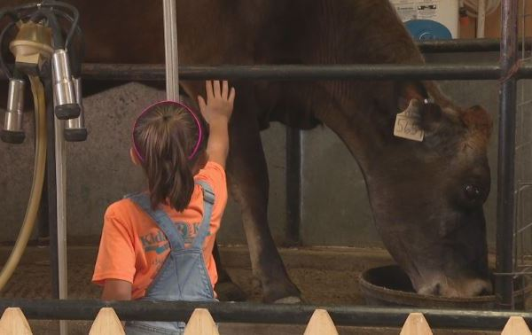 Crowe's Nest Farm hoping to get through pandemic after rough year