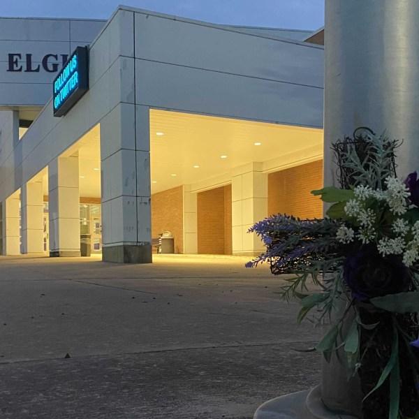Elgin flowers